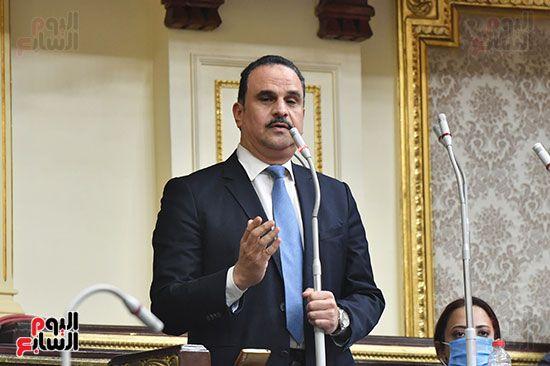 الجلسة العامة لمجلس النواب (43)