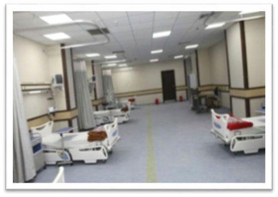 مستشفى حورس (4)