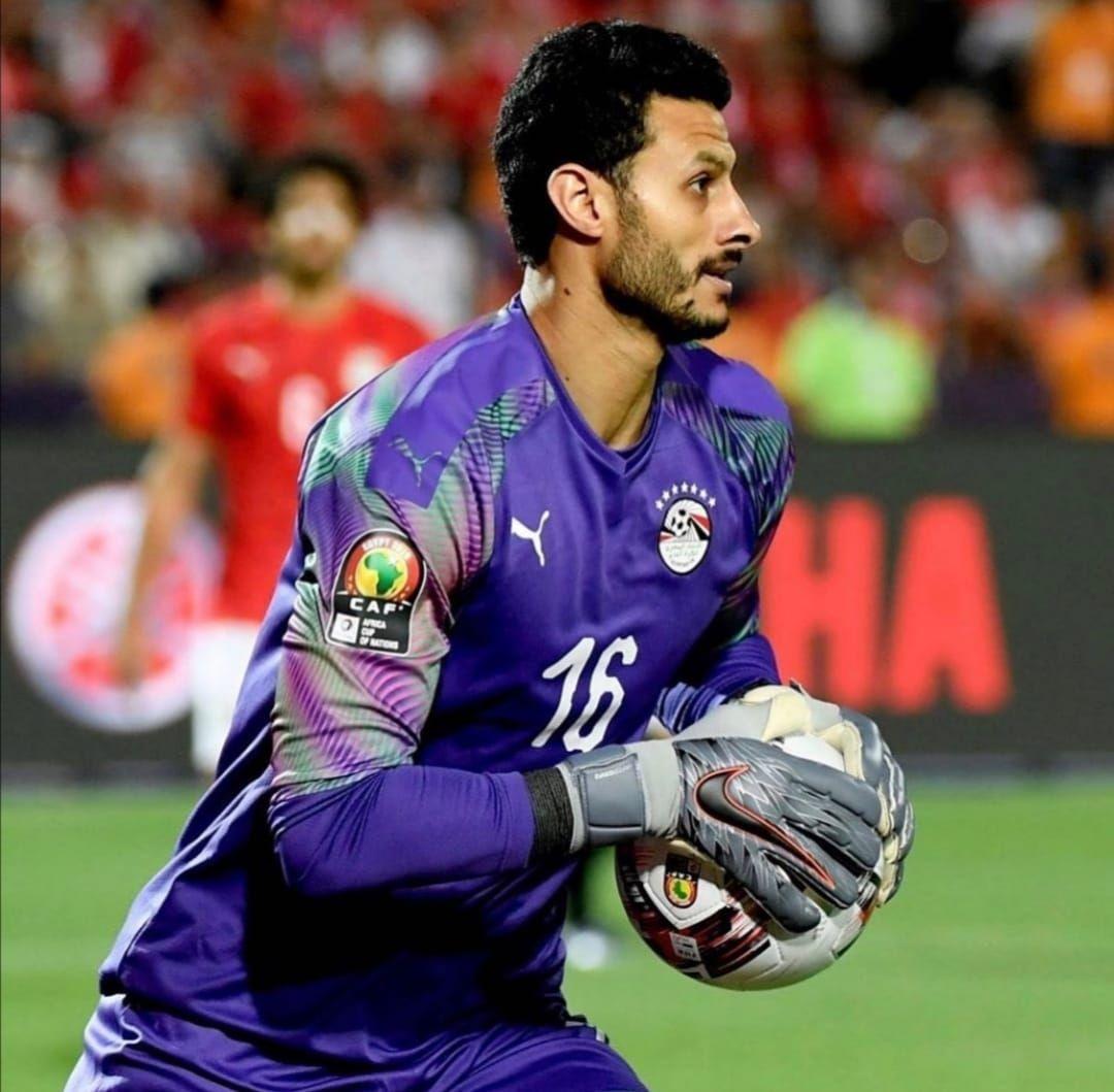 محمد الشناوي (5)