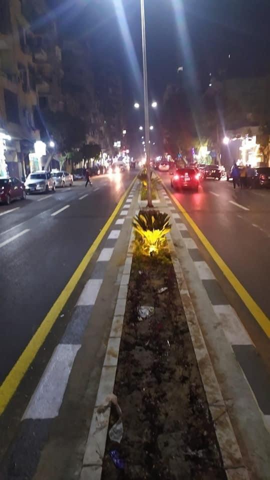 شارع المنيل