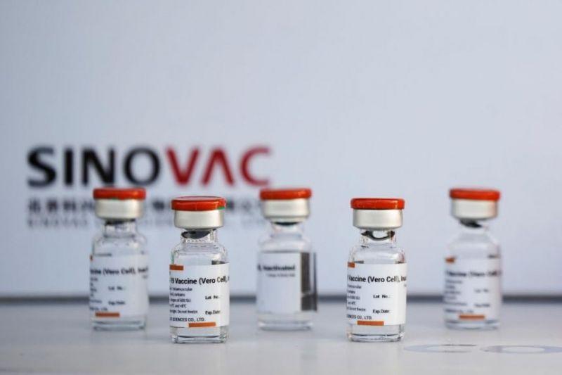 سينوفاك ترفع قدرتها الإنتاجية إلى 2 مليار جرعة سنويًا (2)