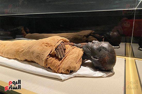 المومياوات الملكية متاحة لاستقبال الزوار بالمتحف القومى للحضارة (9)