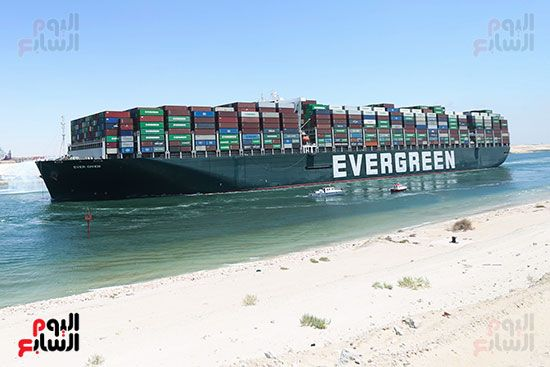 قارب دائم الخضرة