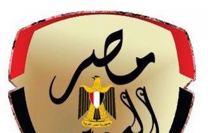 فيديو.. انقلاب سيارة نقل محملة بـ الطوب  على الطريق الدائرى وإصابة قائدها