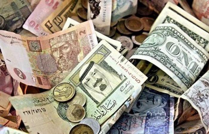 الاستقرار سيد الموقف.. أسعار العملات الأجنبية أمام الجنيه اليوم الاثنين 1 فبراير 2021