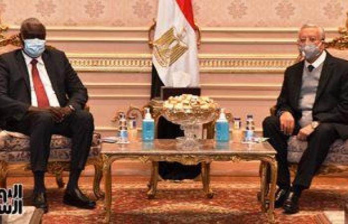 رئيس مجلس النواب يستقبل موسى فقيه رئيس مفوضية الاتحاد الإفريقى.. صور