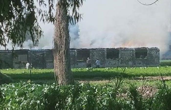 نشوب حريق بمزرعة دواجن فى ههيا ونفوق 11 ألف كتكوت
