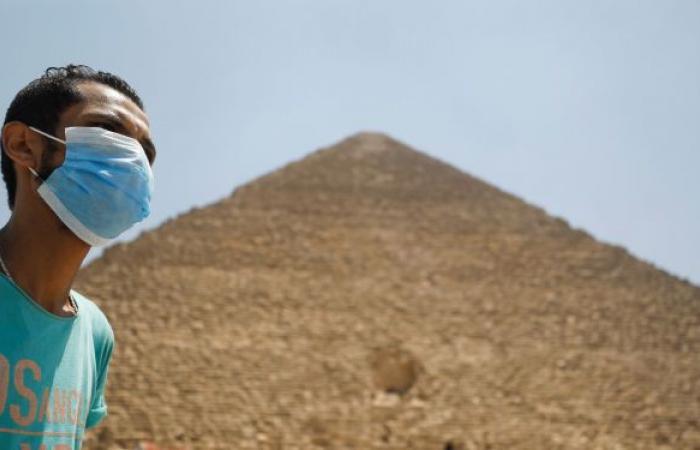 مسؤولة في الصحة: جينات المصريين قوية وتلعب دورا كبيرا في مواجهة كورونا