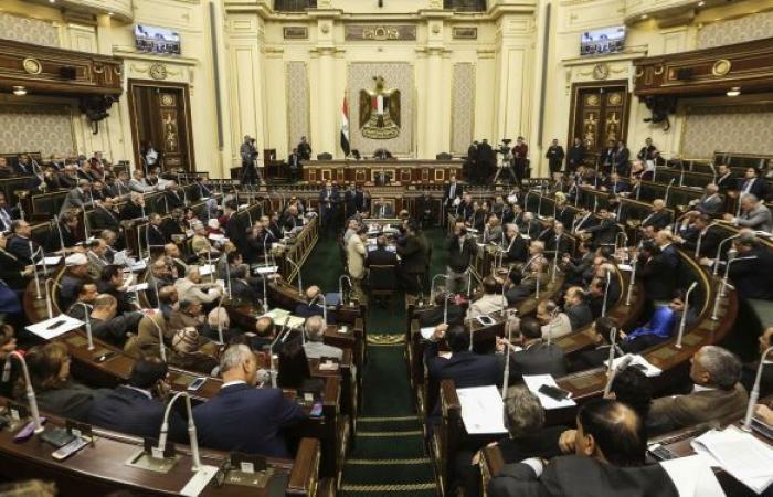 """""""تضر أكثر ما تنفع""""... برلماني مصري ينتقد اتفاقية التجارة مع تركيا"""