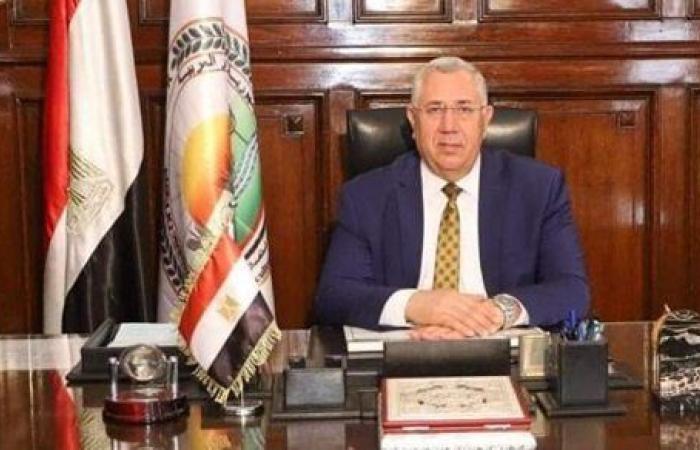 الزراعة: مصر صدرت 909 أطنان دواجن و32 ألف كتكوت و3.6 مليون بيضة مائدة