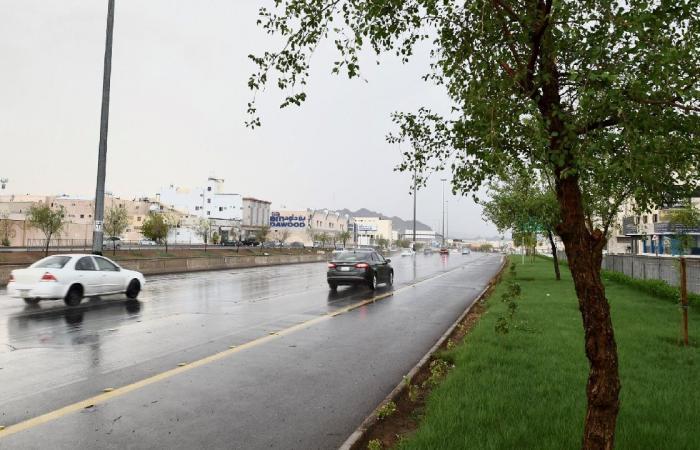 الحربي: عبور أكثر من حزام سحابي ممطر.. من شمال إلى جنوب المملكة