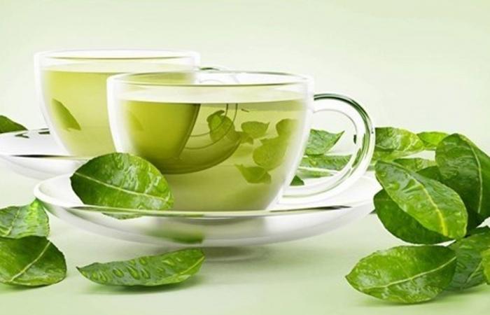 الشاي الأخضر.. يحارب الشيخوخة.. ويقي من 3 أمراض خطيرة