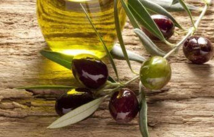 فوائد الزيتون على صحة الجسم والبشرة والشعر
