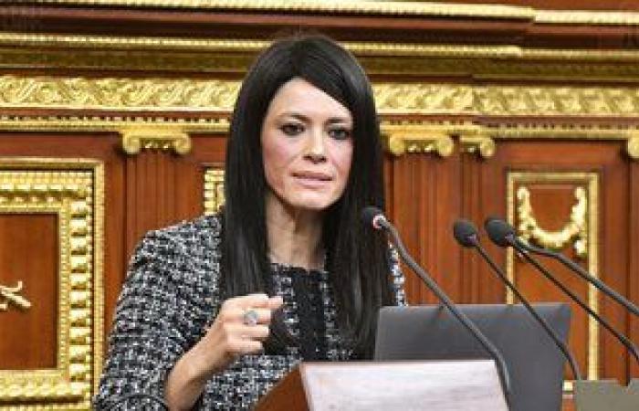 """تضامن البرلمان تستعرض جهود """"التعاون الدولى"""" فى دعم برامج الحماية الاجتماعية"""