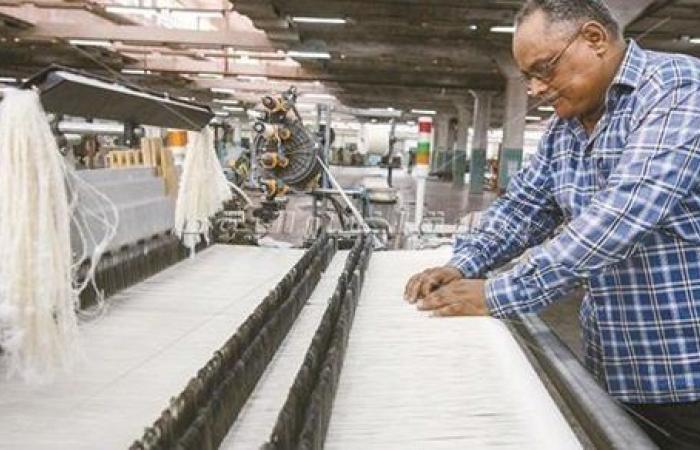 وزيرة التخطيط: الإصلاح الهيكلي يهدف إلى وجود مرونة في سوق العمل