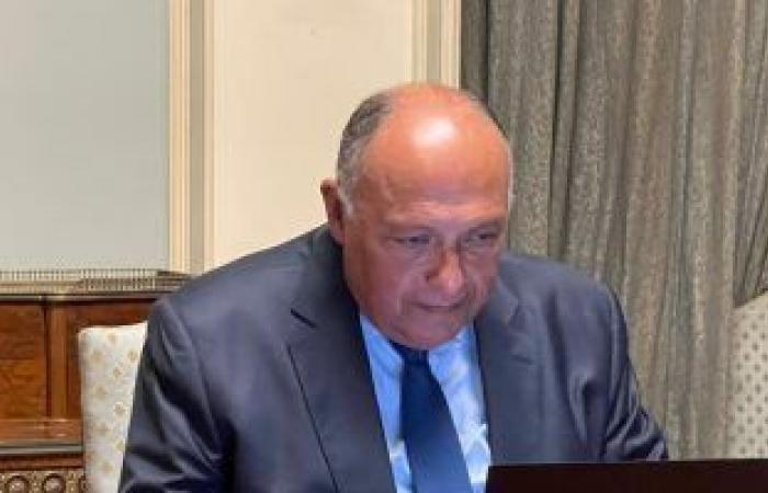 سامح شكرى: اجتماع وزراء الخارجية العرب أكبر دعم للقضية الفلسطينية
