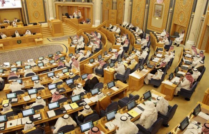 مجلس الشورى يوافق على مشروع الربط الكهربائي بين السعودية والأردن