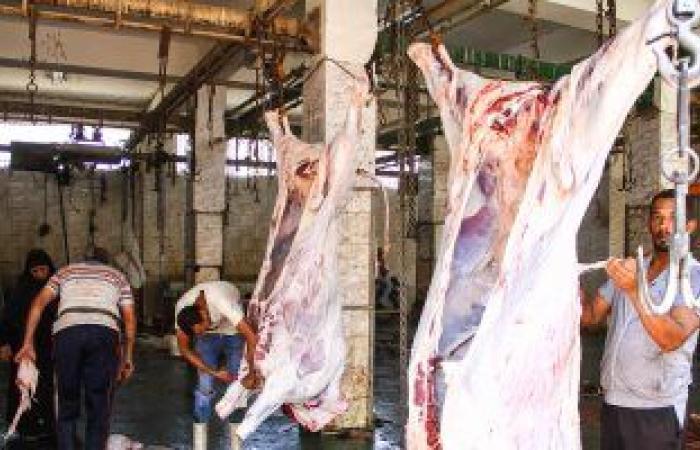 الزراعة: حملات مفاجئة بأماكن عرض بيع اللحوم والأسماك ..اعرف التفاصيل