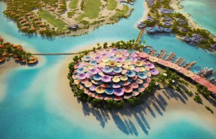 فيديو.. محمد بن سلمان يطلق كورال بلوم أكثر مشاريع السياحة المتجددة طموحًا في العالم