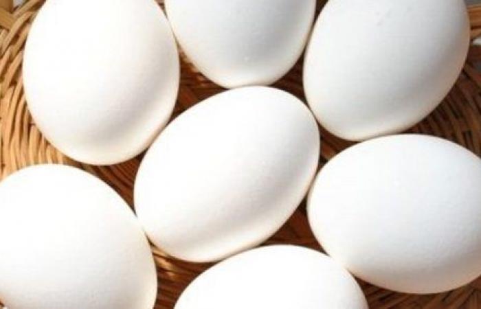 خطر الوفاة يزداد بنسبة 14 % بتناول بيضة يومياً