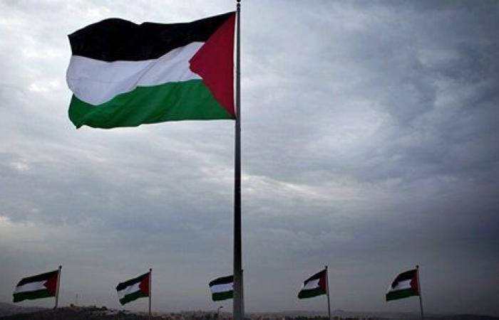 باراجواي تؤكد دعمها لـ فلسطين وحل الدولتين
