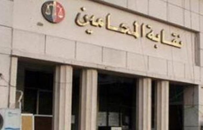 """""""المحامين""""تؤكد انتظام سير انتخابات النقابة الفرعية بالقاهرة الجديدة"""