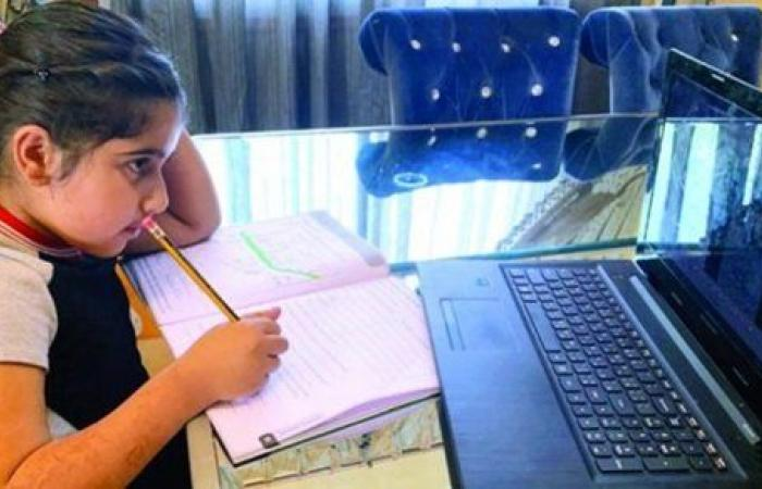 أستاذ جامعي: نجاح كبير للتعليم الهجين في فترة قصيرة بمصر