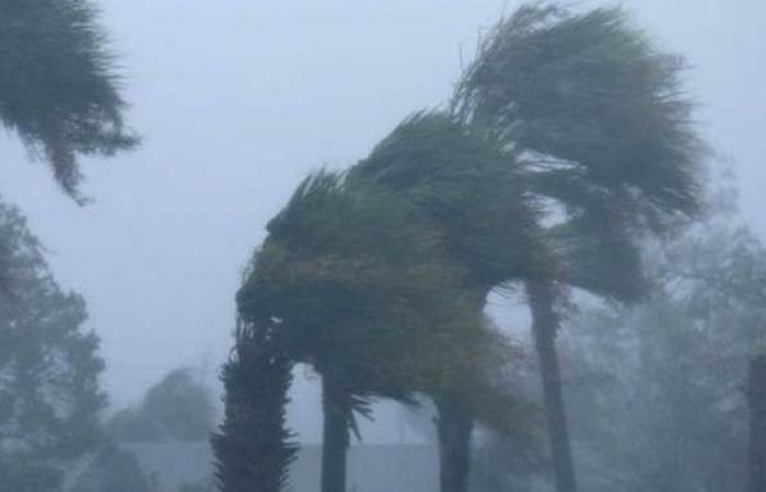 طقس متقلب.. الأرصاد: أمطار غزيرة ورعدية ورياح تصل للعاصفة