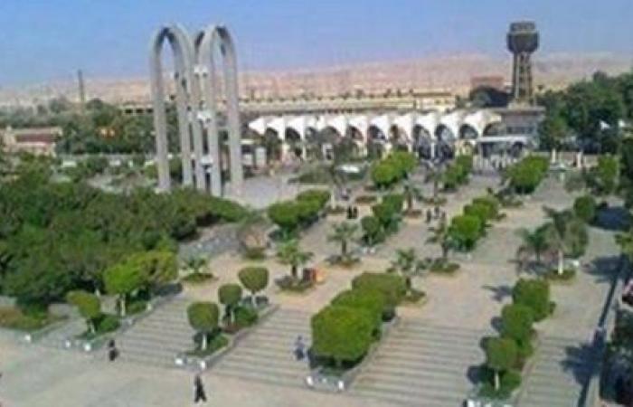 جامعة حلوان تنظم ورشة عمل عن المراجعات المنهجية