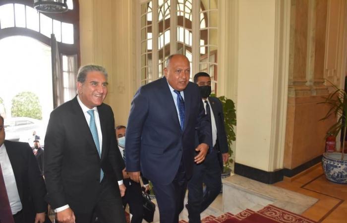 مؤتمر صحفى مشترك بين وزير الخارجية ونظيره الباكستانى بعد قليل