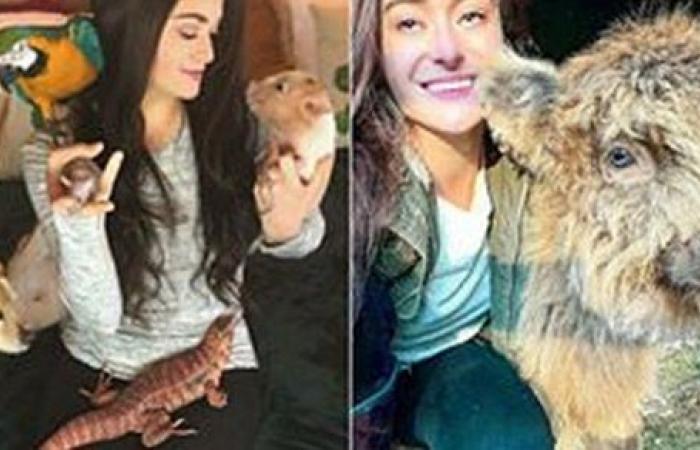 شابة تحول منزلها لحديقة حيوان وتنفق 800 ألف جنيه لمراعاة كائناتها الأليفة.. صور