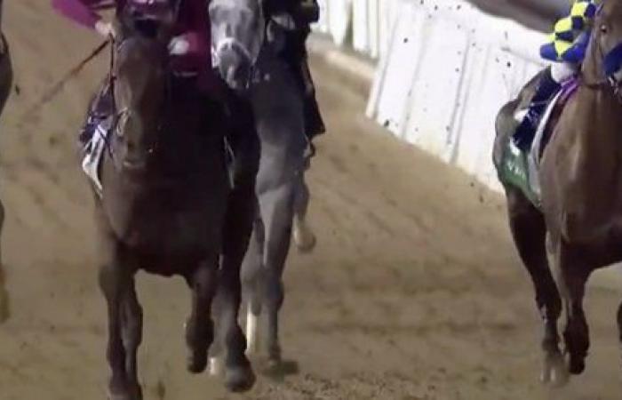 البحرين.. منافسة ساخنة بين المشاركين في سباق القدرة برعاية الملك حمد بن عيسى