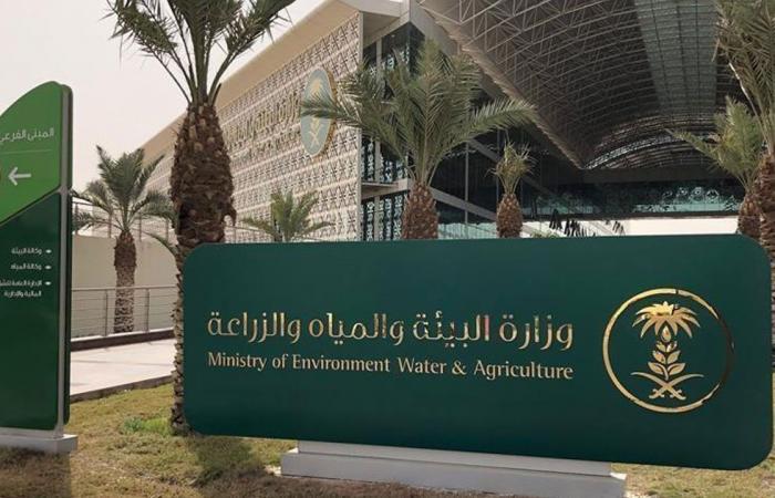 زراعة 3 ملايين شجرة باتفاق تعاون بين وزارتي الحرس الوطني والبيئة