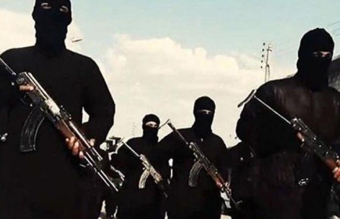 تحريات الأمن الوطني تكشف تكليفات هشام عشماوي لزوج أخته