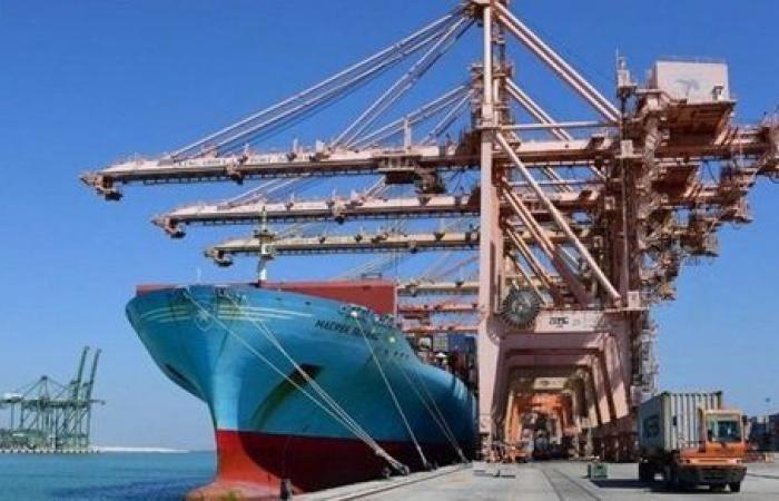 الإفراج عن شحنة منتجات غذائية مصرية محتجزة بالموانئ السعودية