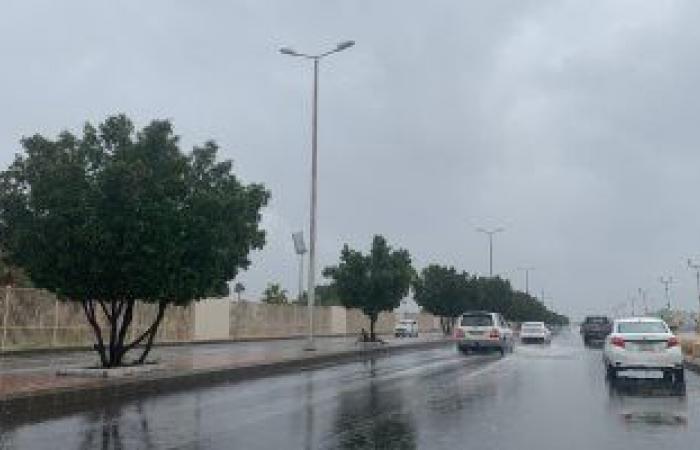 التنمية المحلية توجه بمراجعة استعداد المحافظات للتعامل مع الطقس السىء