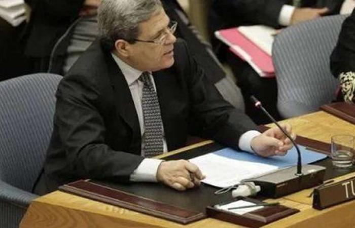 شريف الجبلي عن تضامن تونس مع مصر في قضاياها الإقليمية: خطوة إيجابية ومشجعة