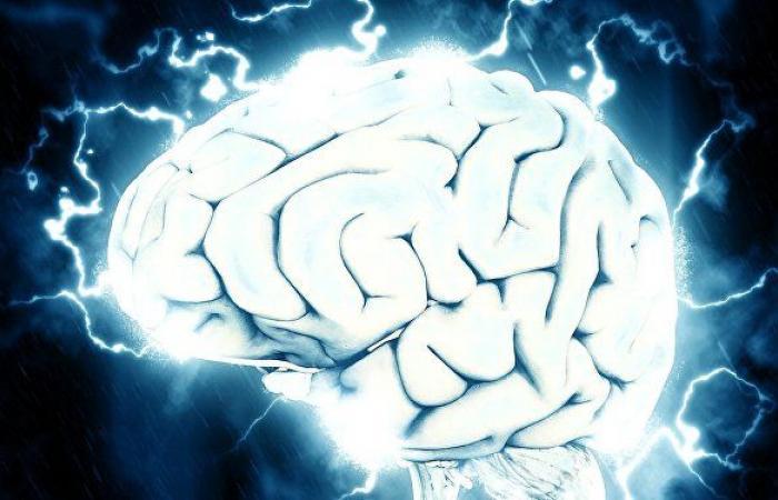 تبدأ المهارات المعرفية في التراجع بعد الـ30… 5 طرق طبيعية لتحسين الذاكرة