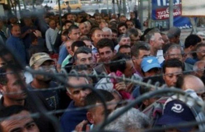 1.250 مليار دولار خسائر العمال الفلسطينيين بسبب كورونا.. اتحاد عمال مصر يطالب بتوزيع عادل للقاح