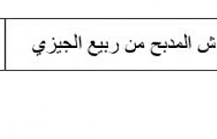 أبرزها طهارة المكان والبدن .. الإفتاء توصي بالحرص على 6 أمور قبل الصلاة