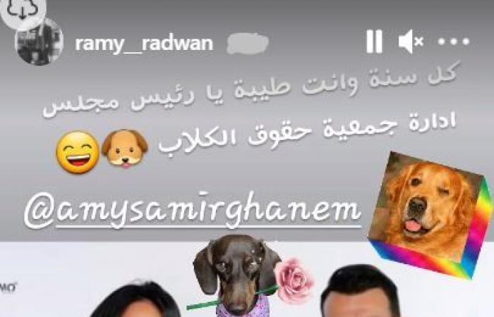 رامى رضوان لإيمى سمير غانم في عيد ميلادها:رئيس مجلس إدارة جمعية حقوق الكلاب