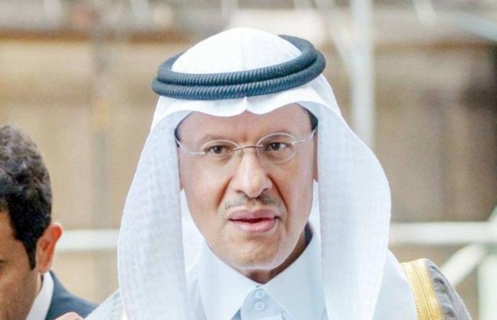وزير الطاقة: لا أحد يضغط على «أوبك+»
