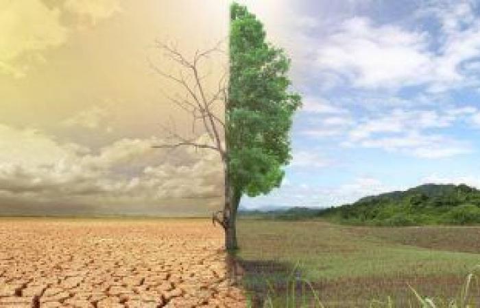 البيئة: إعلان خريطة تفاعلية لآثار التغيرات المناخية حتى 2100 فى مصر العام الحالى