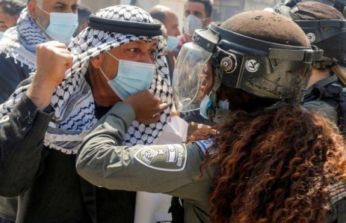 مستوطنون يعتدون على مسن فلسطيني داخل أرضه ووزير الدفاع الإسرائيلي يتوعد... فيديو