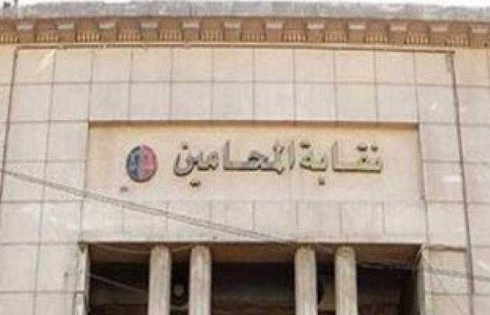 """اللجنة المشرفة على انتخابات فرعيات """"المحامين"""": العملية الانتخابية تسير بانتظام"""