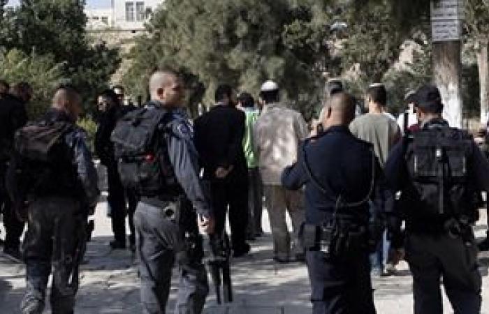 81 مستوطناً إسرائيلياً يقتحمون باحات المسجد الأقصى المبارك