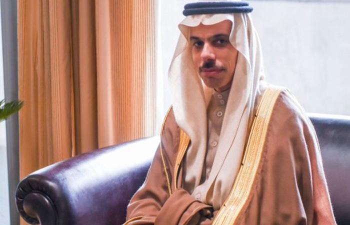 سفير السعودية بعمان: زيارة الأمير فيصل بن فرحان لدعم الأردن فقط