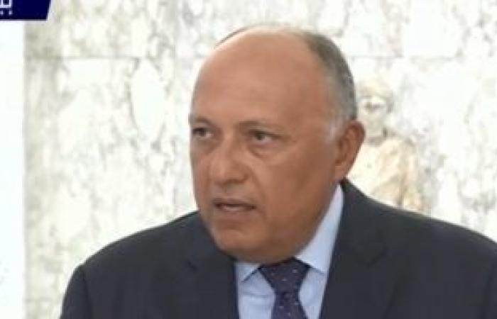 سامح شكرى يبحث مع نبيه برى مستجدات الوضع فى لبنان