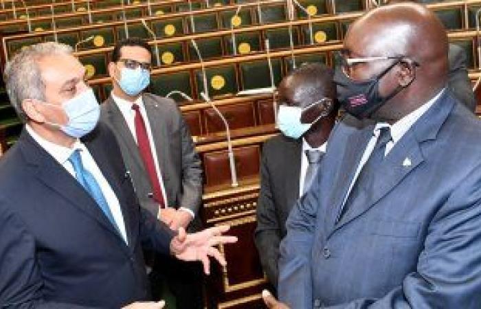 وزير شئون المجالس النيابية يلتقى وفدا قضائيا من جنوب السودان.. صور