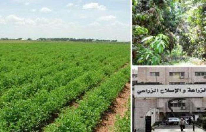وزير الزراعة يبحث فى جوبا التعاون الزراعى بين مصر وجنوب السودان